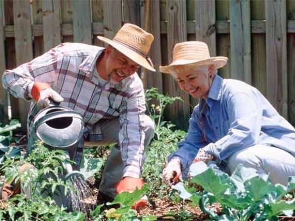 Копилка секретов для садоводов!