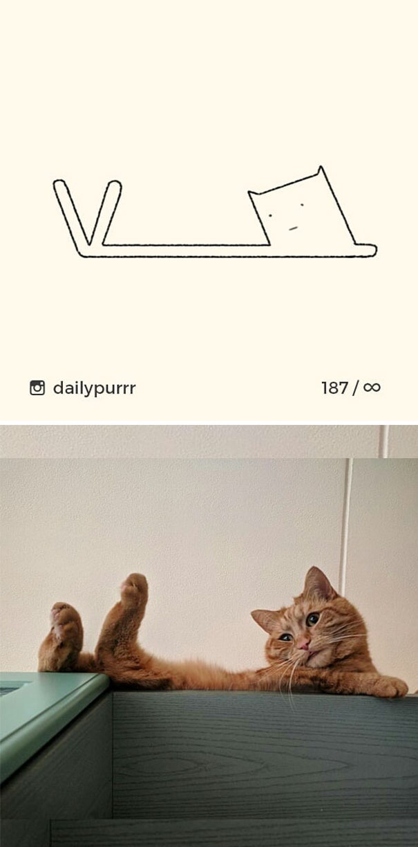 42+ Times 'Stupid Cat Drawings' Made Everyone Laugh With How Accurate They Were