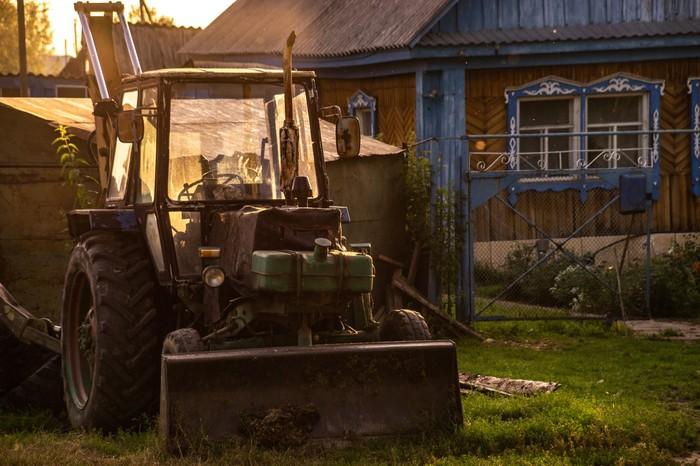 Лето за городом Фотография, Деревня, Лошади, Трактор, Собака, Длиннопост
