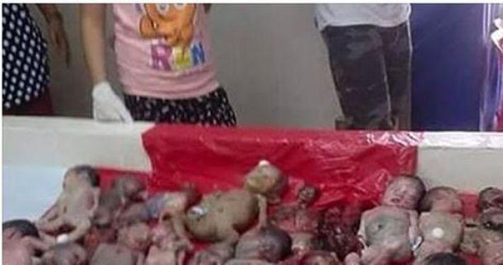 Эти Супы Очень Популярны В Китае. Узнав, ИЗ ЧЕГО Их Делают, Кровь Стынет В Жилах!