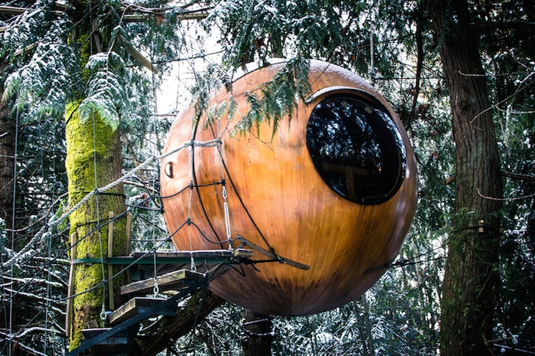 round treehouse