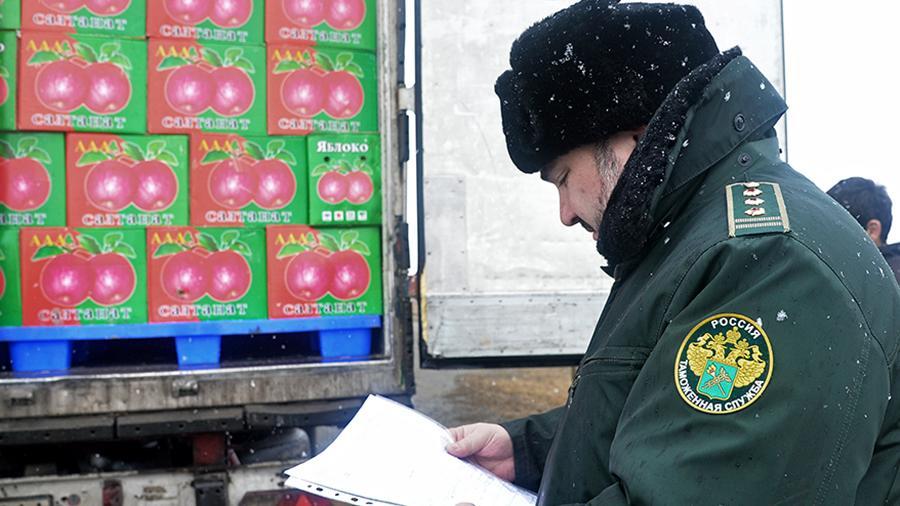 Шпик прошел через границу: поток «запрещенки» в Россию вырос на 80%