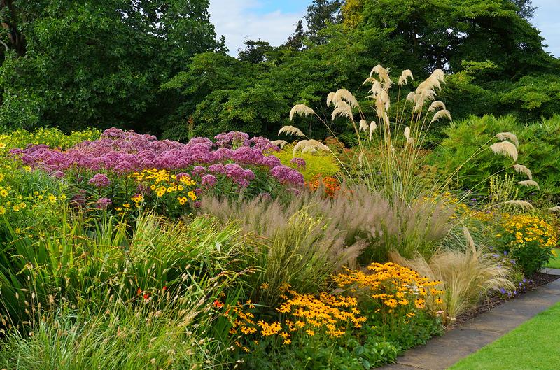 Ботанический сад Несса (Ness botanic gardens)