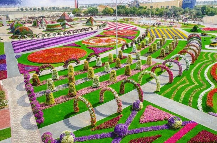 Сад чудес в Дубае: цветочное…