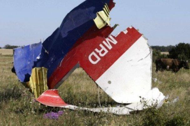 Немецкий адвокат сделал скандальное заявление о трагедии МН-17