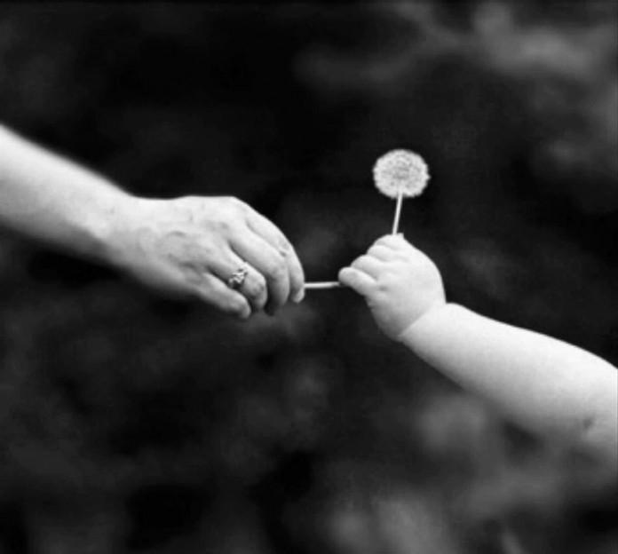Жизнь – не подарок! Родился – придётся как-то жить…