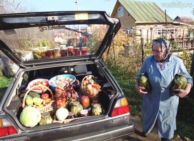 Дачники снова увлеклись садо-огородами