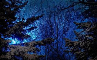 Зимняя ночёвка без палатки. Одиночный поход