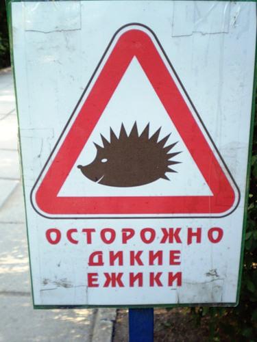 Что написано пером...из Евпатории с юмором)