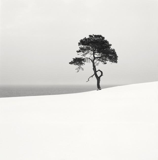 «Тихие моменты» – визуальные поэмы шведского фотографа Хокана Странда