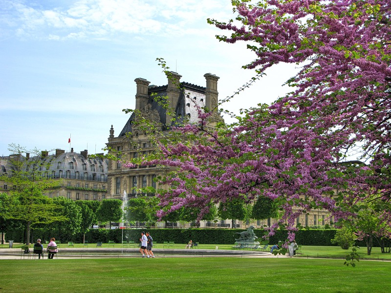 Весна в Париже /// Сказать КРАСИВО - ничего не сказать ...