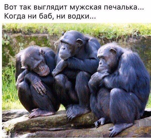Улыбнемся))) Завтра понедельник))))