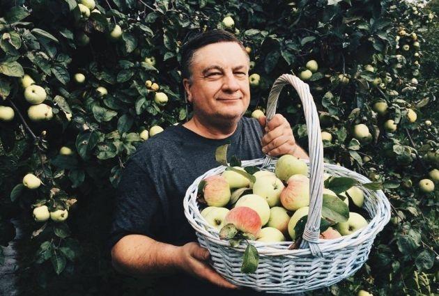 Андрей Туманов: все на борьбу с падалицей!
