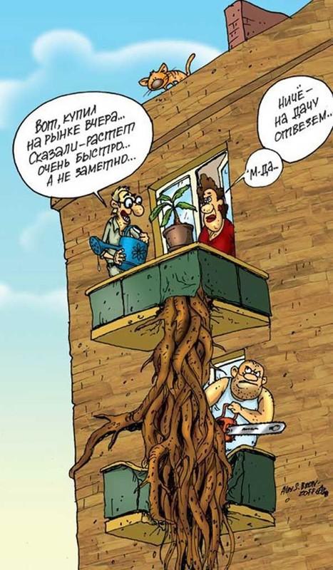 Карикатуры задорной подборочкой