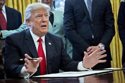 Бывший вице-президент компании Трампа рассказала о его нарциссизме