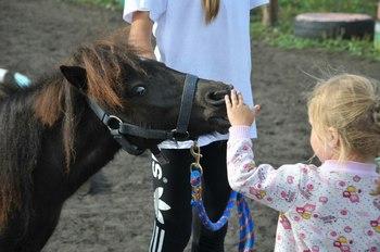Клуб «Добрая лошадка» получил президентский грант для бесплатной помощи детям