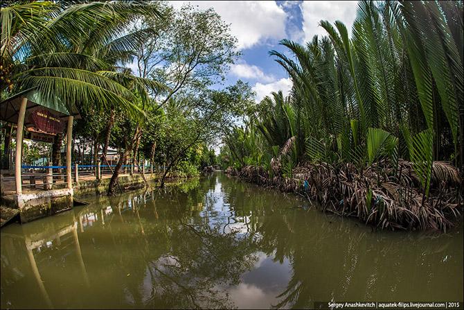 Прогулка по дельте Меконга