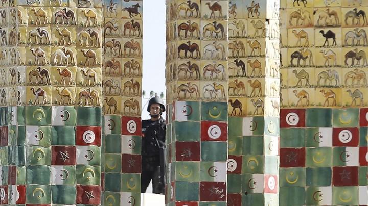 Поможем чем сможем: как США будут развивать демократию в Тунисе