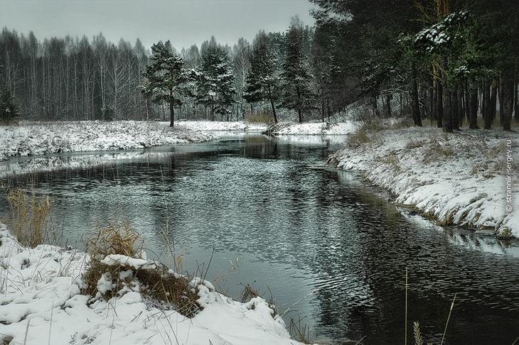 Фото Сергея Странника - декабрь 2