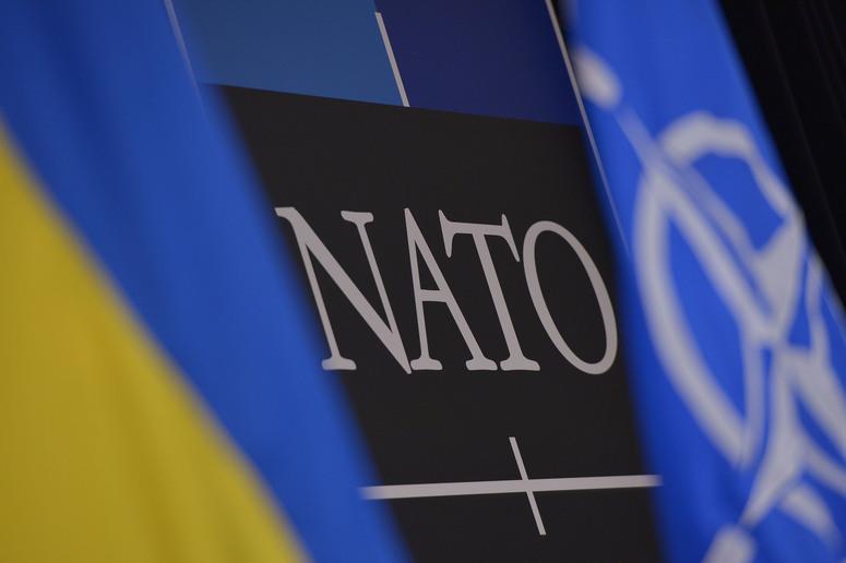 Слон и Моська или для чего нужно НАТО?