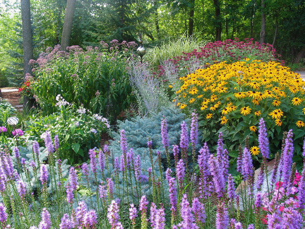 Wide view of a colorful floral garden on Rate My Space - purple, yellow, and red  colors highlight this landscape.