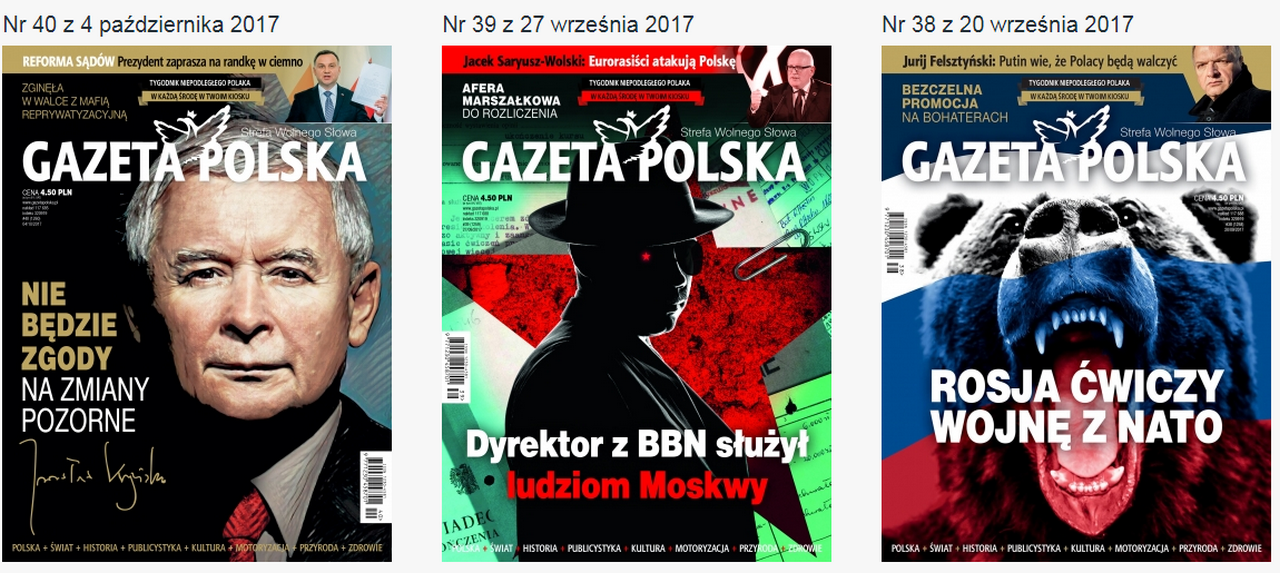 Польша под властью бешеных. Юрий Селиванов