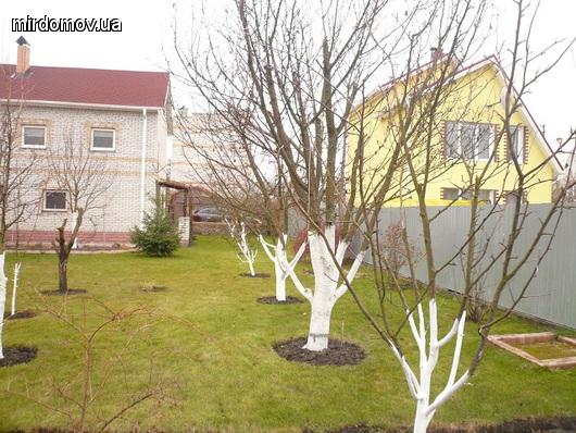 Продажа домов и дач Вышгород Новоселки Новоселки Вышгород