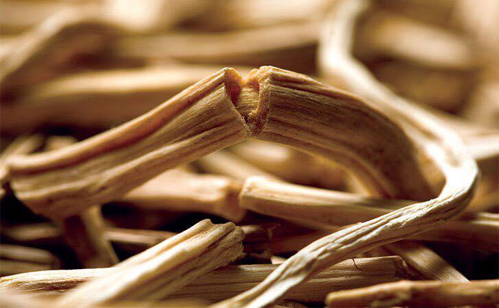 САКРАЛЬНЫЕ РАСТЕНИЯ АЮРВЕДЫ: ШАТАВАРИ (Asparagus racemosus)