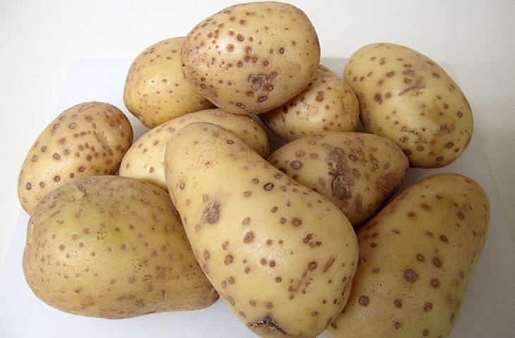 9 правил идеального картофельного пюре