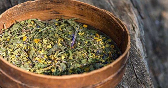 Традиционный американский чай, который лечит рак (Рецепт внутри)!