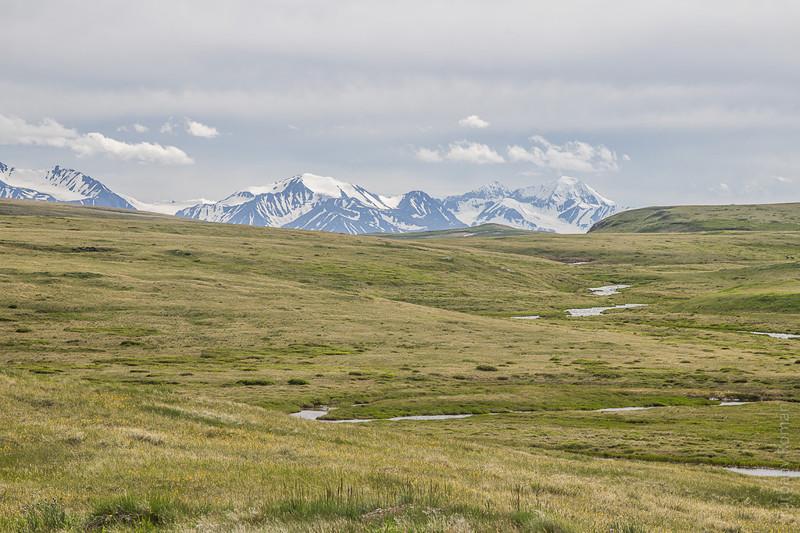 Ручей Кальджин и хребет Южный Алтай алтай, путешествия, россия, укок, фото