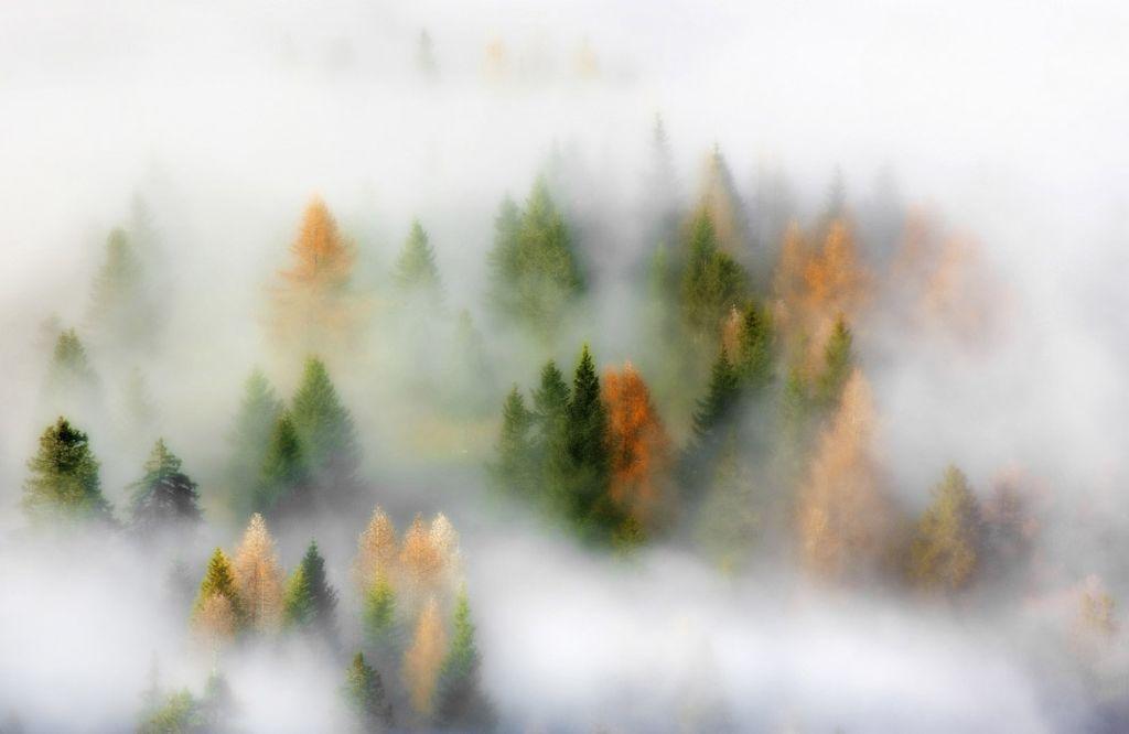 Очарованный осенью