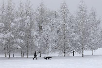 В Россию Придут Уровые И Снежные Зимы