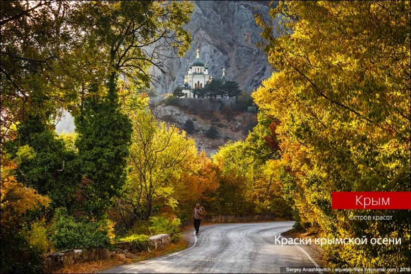 Зачем осенью ехать в Крым? Фотограф Сергей Анашкевич