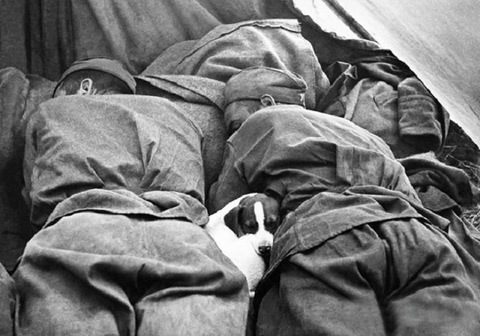 Остаться человеком в аду: фотографии войны от которых сжимается сердце