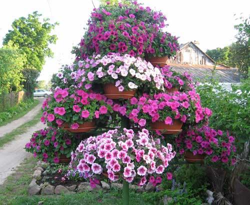 Дачный участок – красивые цветники