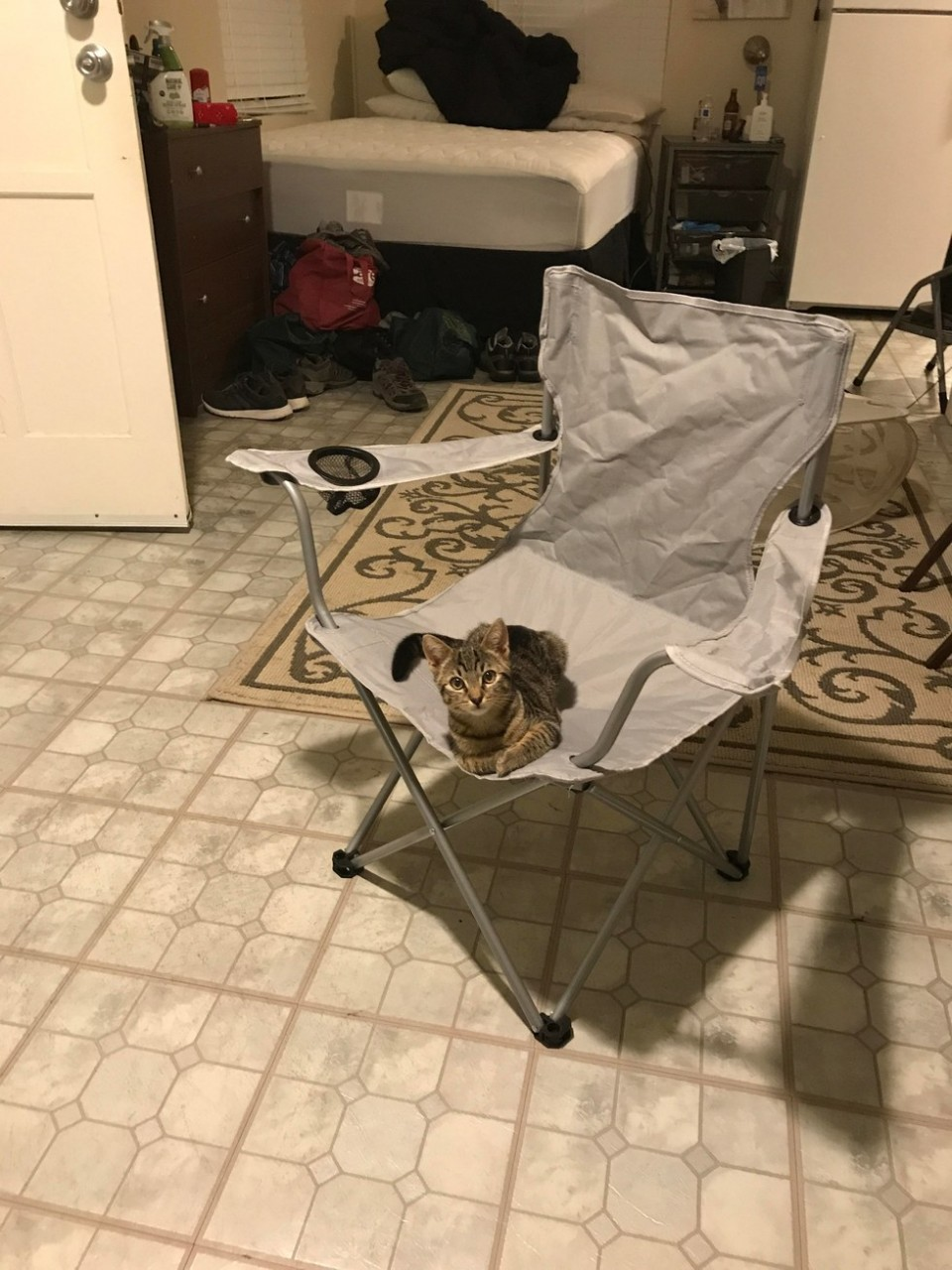 Мужчина пришёл домой, где его уже ждал кот. Но у этого мужчины нет кота.