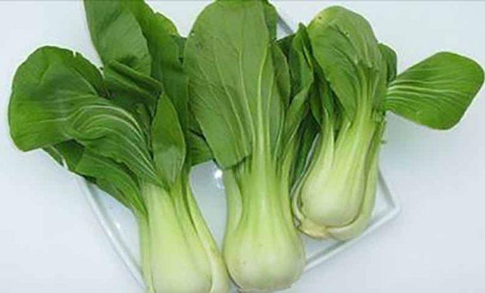 Эти овощи содержат больше железа, чем мясо!