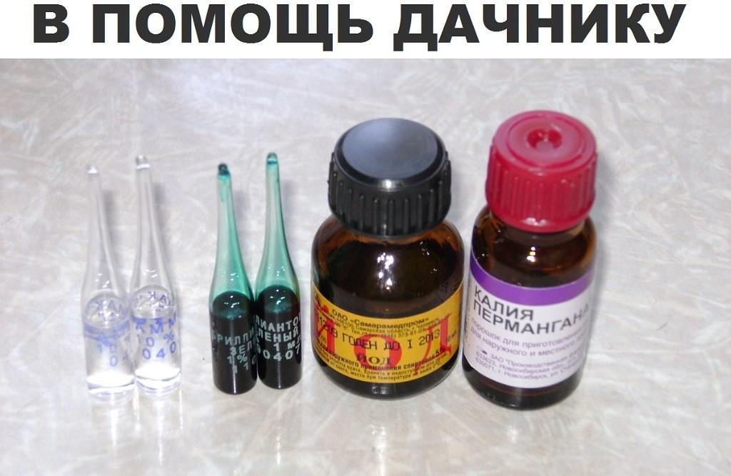 в какой аптеке можно купить мангустин
