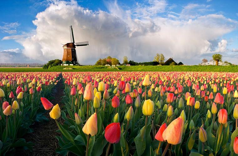 Голландия и Нидерланды – это одно и то же?