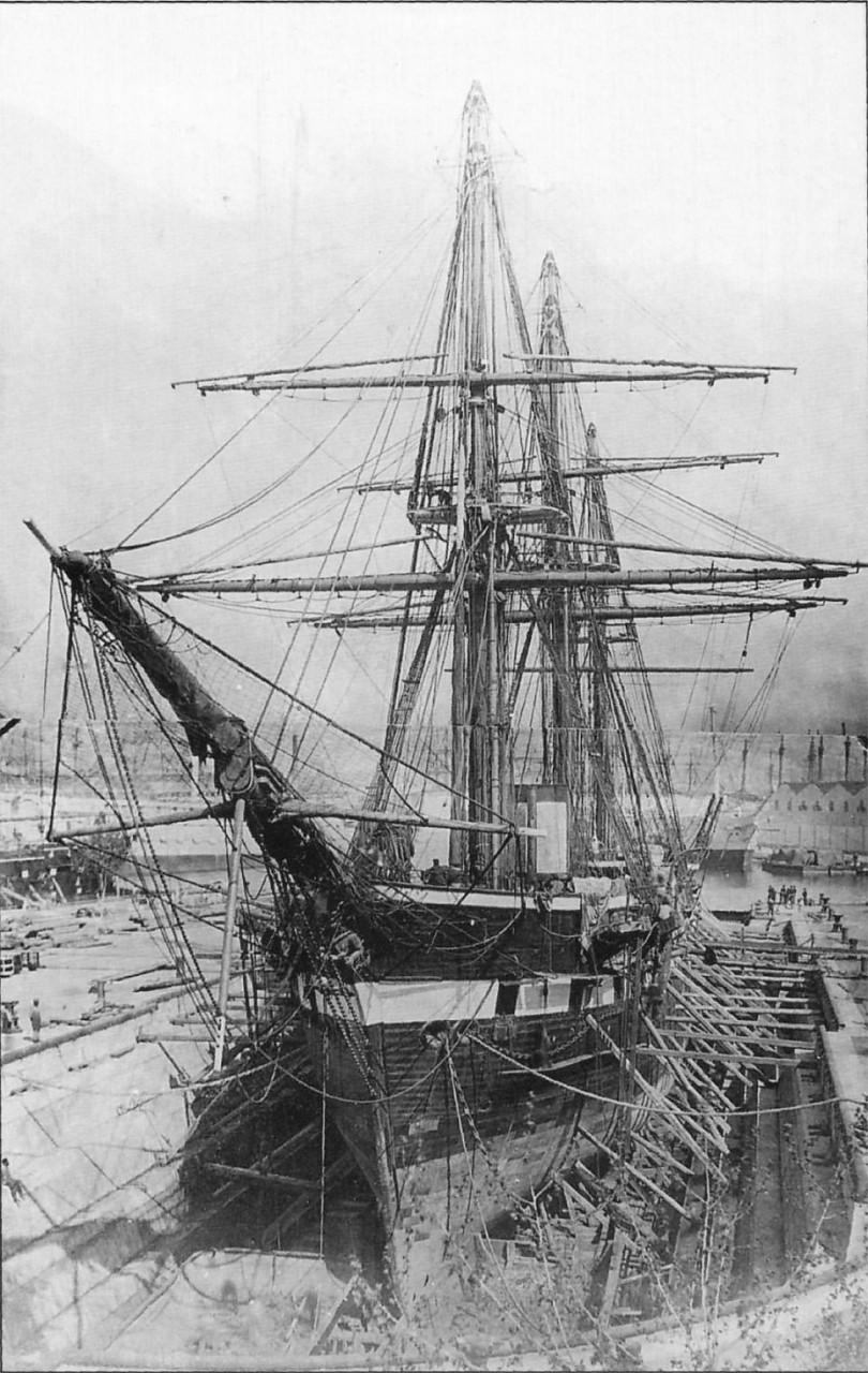 Фото дня: последний поход «Александра Невского»