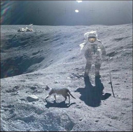 Размышления о борьбе с космическими конспирологами