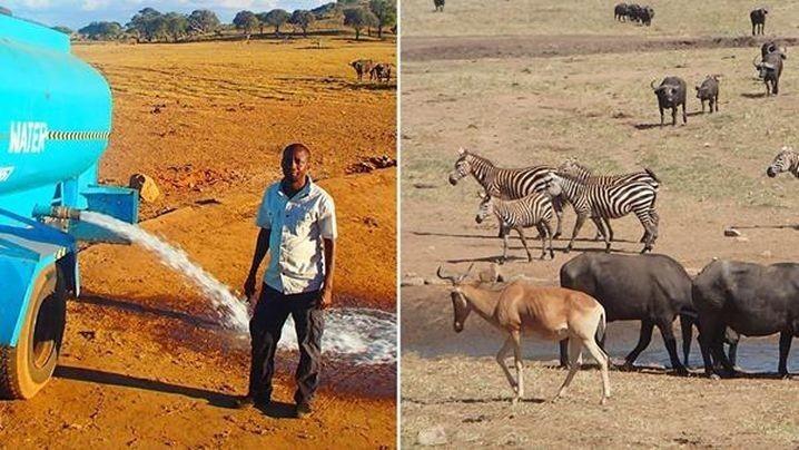 Фермер из Кении доставляет воду для диких животных во время засухи
