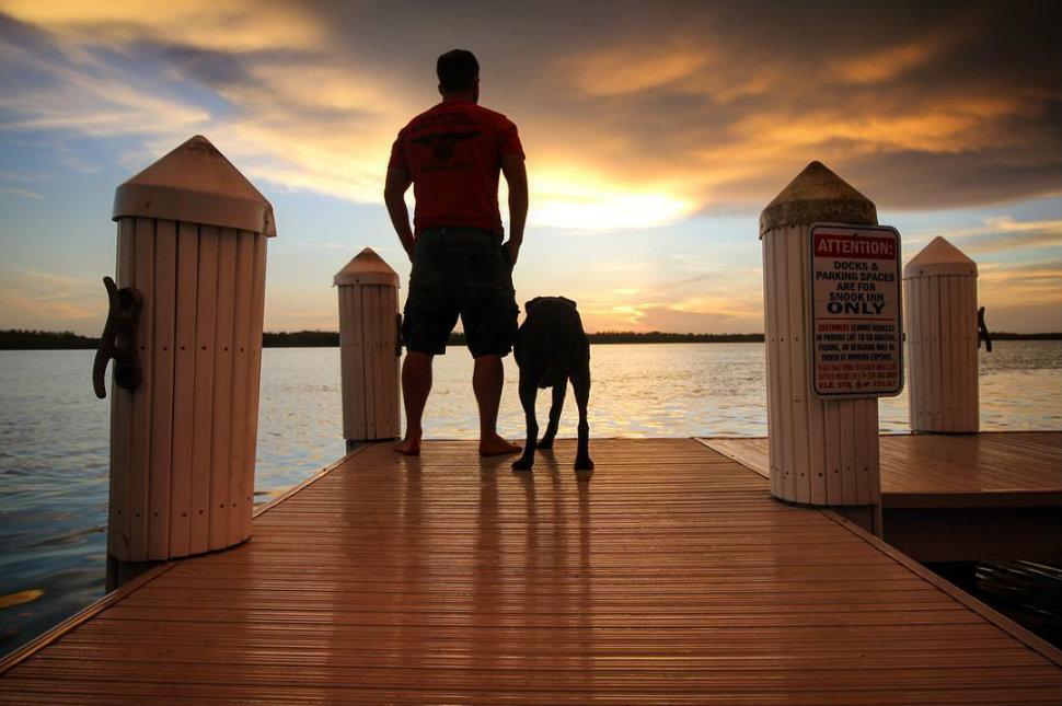 Американец повез больную раком собаку в последнее путешествие