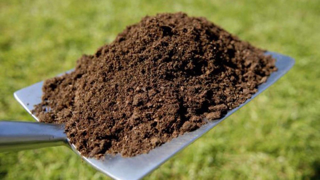 Как сделать компост. Плодородная почва - богатый урожай