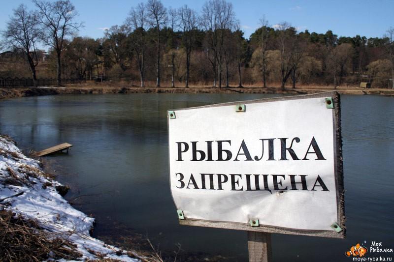 когда запрет на ловлю рыбы в красноярске