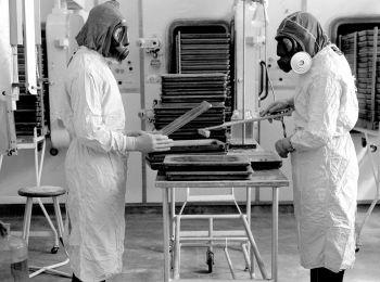 Эпидемия сибирской язвы в 1979 году в Свердловске: что стало причиной