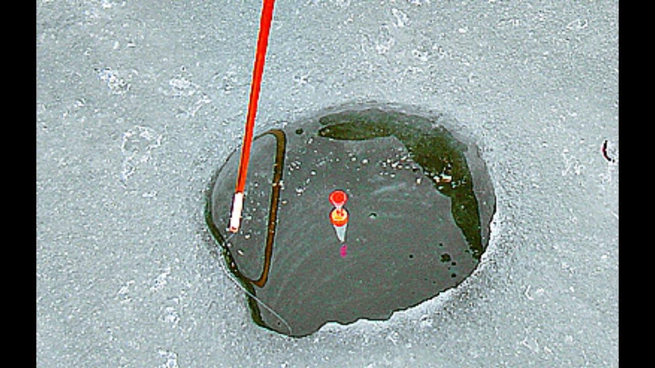 С поплавочными удочками в начале зимы