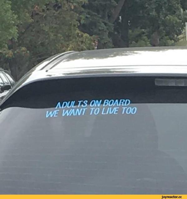 В машине взрослые. Мы тоже хотим жить