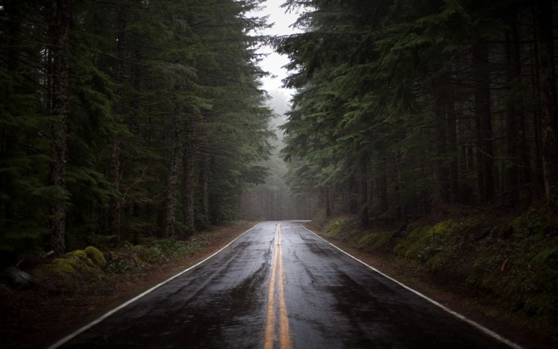 15 заповедей профессионального водителя авто, вождение, дорога, заповеди водителя